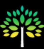 Black Forest Tree Service