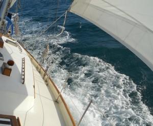 Hawnalea Under Sail 3